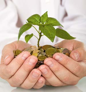 Marketing India's green revolution-