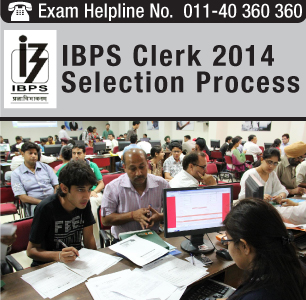 IBPS Clerk 2014 Selection Process