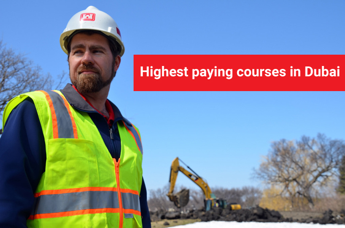 highest paying courses in dubai check here