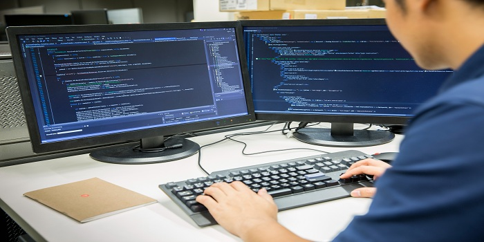Career as a Software Engineer - A diverse role in offering
