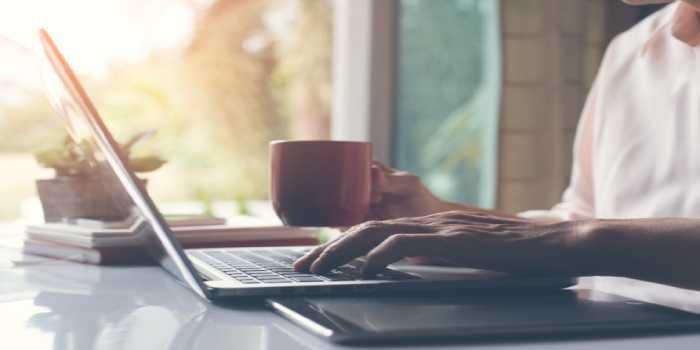 Career as a Blogger