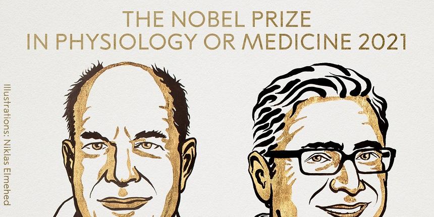 Nobel Prize 2021: David Julius, Ardem Patapoutian receive Physiology or Medicine award