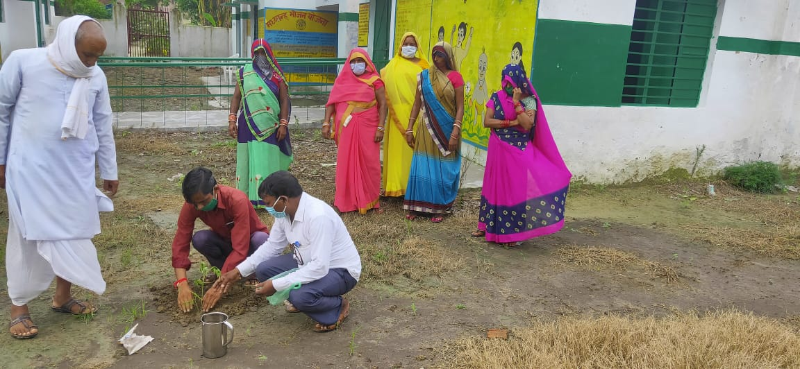 Mahesh-Kumar-UP-Teacher-tree-plantations-drive-featured-image