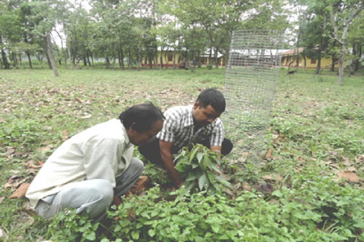 https://cache.careers360.mobi/media/colleges/social-media/media-gallery/10015/2019/3/6/Planting Of Janata College Sefranguri_Others.jpg
