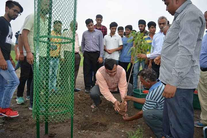 https://cache.careers360.mobi/media/colleges/social-media/media-gallery/1096/2019/7/10/Plantation of Swarnim Gujarat Sports University Gandhinagar_Others.jpg