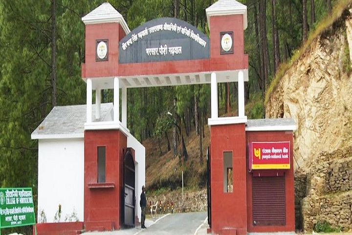 https://cache.careers360.mobi/media/colleges/social-media/media-gallery/1106/2019/7/2/Campus entrance view of Uttarakhand University of Horticulture and Forestry Bharsar_Campus-view.JPG