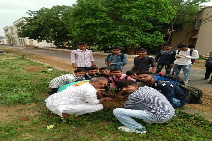 https://cache.careers360.mobi/media/colleges/social-media/media-gallery/11395/2019/2/27/Tree Plantation of Government Polytechnic, Palanpur_Others.JPG