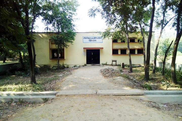 https://cache.careers360.mobi/media/colleges/social-media/media-gallery/12165/2018/8/22/Government-Polytechnic-Bareilly-Campus-View2.jpg