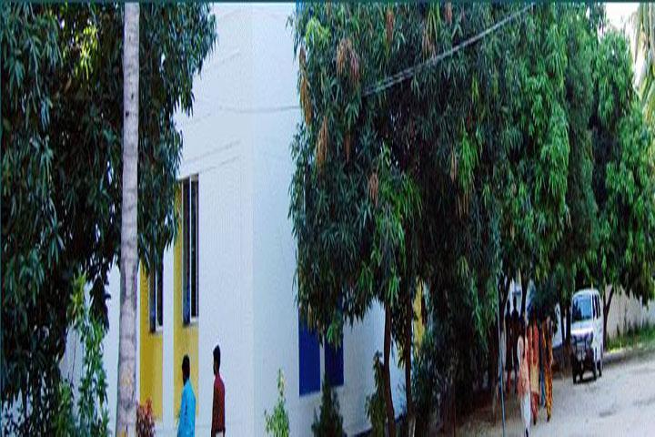 https://cache.careers360.mobi/media/colleges/social-media/media-gallery/12992/2016/12/19/Aragonda-Apollo-College-Of-Nursing-Chennai-(2).JPG