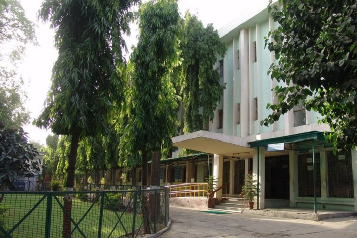 https://cache.careers360.mobi/media/colleges/social-media/media-gallery/16489/2019/5/15/Campus-View of School of Open Learning University of Delhi Delhi_Campus-View.jpg