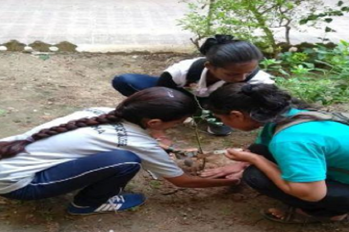 https://cache.careers360.mobi/media/colleges/social-media/media-gallery/16495/2021/3/17/Tree Plantation of Shri JM Patel Arts and Smt MN Patel Commerce Mahila College Mehsana_Others.png