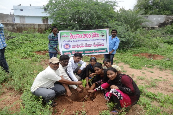 https://cache.careers360.mobi/media/colleges/social-media/media-gallery/17051/2020/2/7/Plantation of Government Degree College Huzurabad_Others.jpg