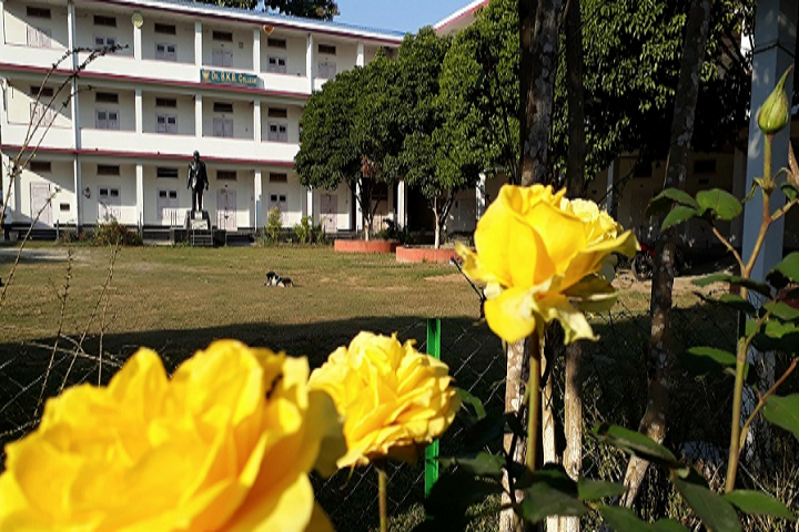 https://cache.careers360.mobi/media/colleges/social-media/media-gallery/18362/2019/4/24/Campus-view of Dr Birinchi Kumar Barooah College Puranigudam_Campus-View.png
