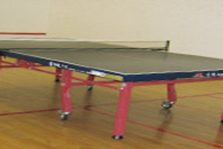 https://cache.careers360.mobi/media/colleges/social-media/media-gallery/18722/2018/10/12/Sports table tennis of Gitarattan Institute of Advanced Studies and Training Delhi_Sports.jpg