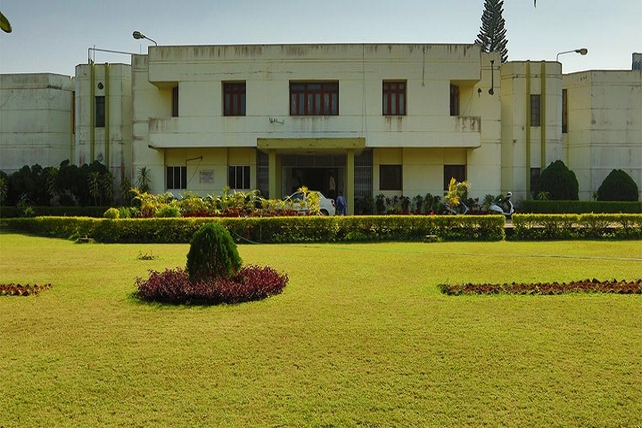 https://cache.careers360.mobi/media/colleges/social-media/media-gallery/19545/2018/11/5/Campus view of Nabakrishna Choudhury Centre for Development Studies Bhubaneswar_Campus-view.jpg