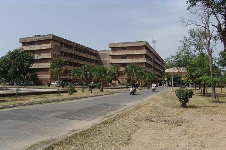 https://cache.careers360.mobi/media/colleges/social-media/media-gallery/26723/2020/8/7/Campus view of College of Basic Sciences and Humanities Hisar_Campus-view.jpg