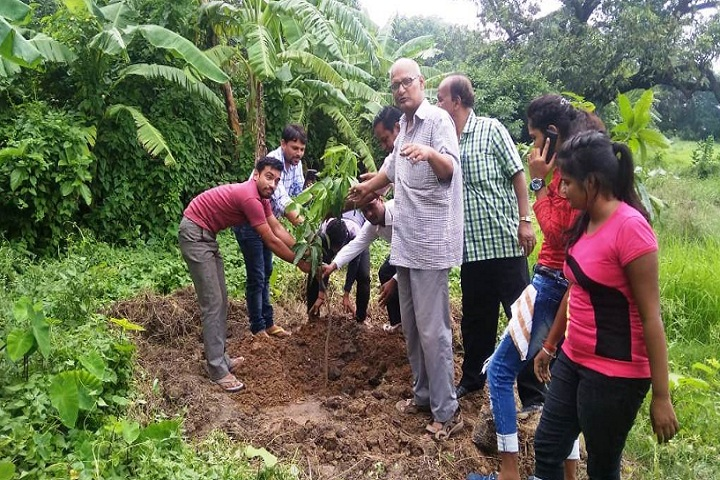 https://cache.careers360.mobi/media/colleges/social-media/media-gallery/27137/2019/11/27/Plantation of Government Sanskrit College Bhagalpur_Others.jpg