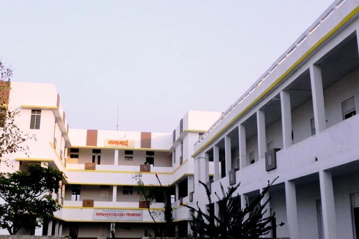 https://cache.careers360.mobi/media/colleges/social-media/media-gallery/27899/2019/12/28/Campus view of Nagaon Education Societys Gangamai College of Pharmacy Dhule_Campus-view.jpg