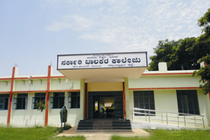 https://cache.careers360.mobi/media/colleges/social-media/media-gallery/28688/2020/2/14/Campus view of Government Boys College Chintamani_Campus-view.jpg