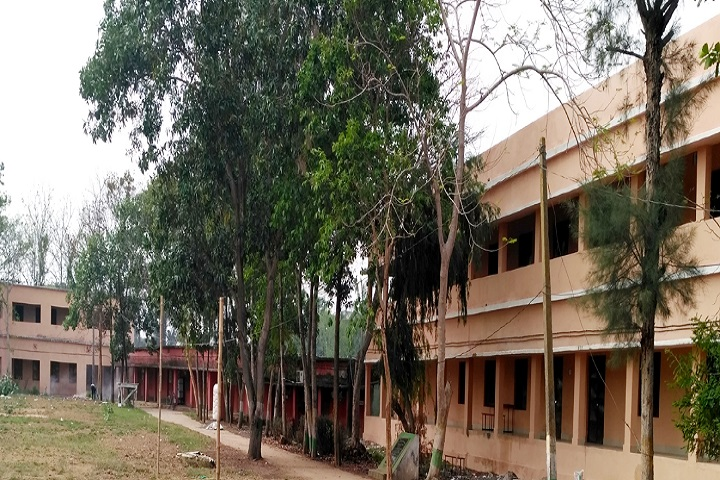 https://cache.careers360.mobi/media/colleges/social-media/media-gallery/29261/2020/7/20/Campus view of Balikuda College Jagatsinghpur_Campus-View.jpg