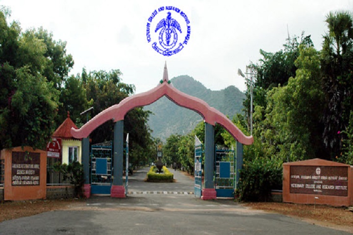https://cache.careers360.mobi/media/colleges/social-media/media-gallery/29703/2020/6/24/Main Gate Campus View of Veterinary College and Research Institute Namakkal_Campus-view.jpg