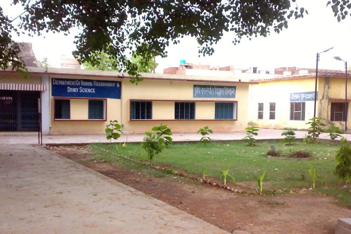 https://cache.careers360.mobi/media/colleges/social-media/media-gallery/29812/2020/6/24/Campus view of Zila Parishad Agriculture College Banda_Campus-View.jpg