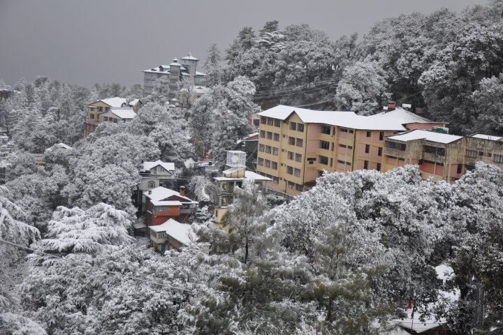 https://cache.careers360.mobi/media/colleges/social-media/media-gallery/598/2018/10/12/Snow Fall in Winter season of Himachal Pradesh University Shimla_Campus-View.jpg