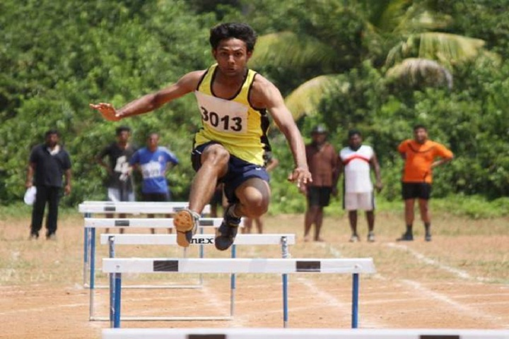https://cache.careers360.mobi/media/colleges/social-media/media-gallery/6486/2019/2/6/Sports one of Amrita Vishwa Vidyapeetham Amritapuri_Sports.jpg