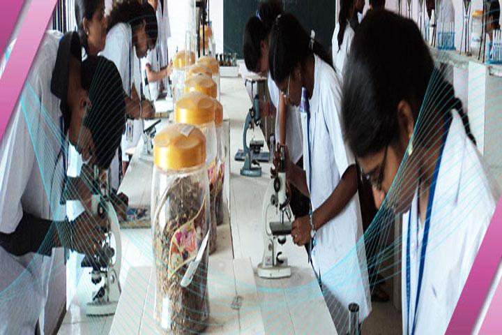 https://cache.careers360.mobi/media/colleges/social-media/media-gallery/6825/2016/3/25/50698-Maheswara-College-of-Pharmacy-Chitkul-(8).jpg