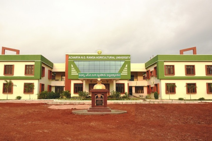 https://cache.careers360.mobi/media/colleges/social-media/media-gallery/685/2018/10/22/Campus View of Acharya NG Ranga Agricultural University Guntur_Campus-View.jpg