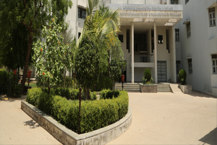 https://cache.careers360.mobi/media/colleges/social-media/media-gallery/6970/2019/2/15/Campus view of KB Institute of Pharmaceutical Education and Research Gandhinagar_Campus-view.png