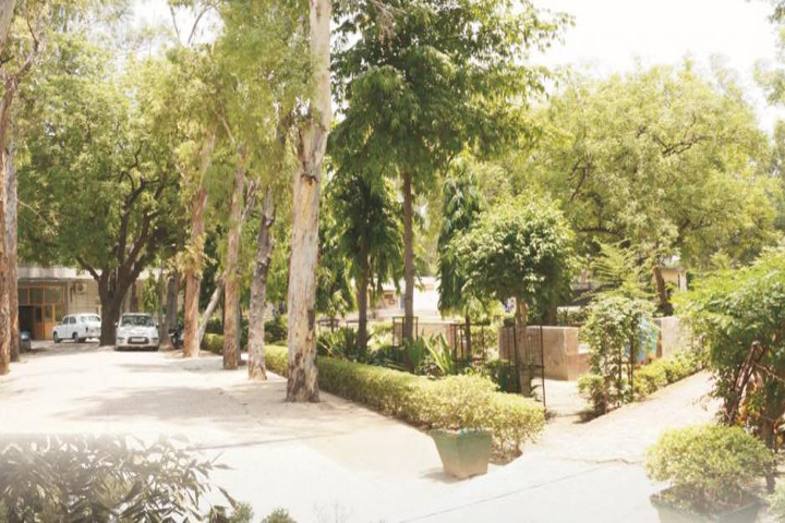 https://cache.careers360.mobi/media/colleges/social-media/media-gallery/7074/2019/4/11/Inside campus view of  Aditi Mahavidyalaya Delhi_Campus-view.JPG