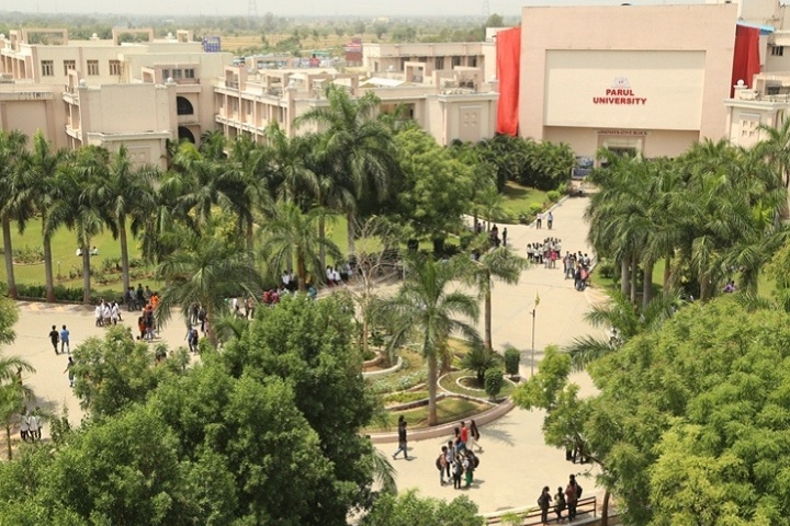 https://cache.careers360.mobi/media/colleges/social-media/media-gallery/7741/2019/3/29/Campus view of Parul Institute of Pharmacy Vadodara_Campus-view.jpg