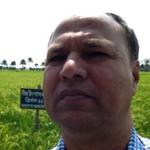 Jata Shankar Choudhary