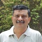 Sastry Bhamidipati