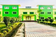 Carol Convent School-Campus View