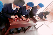 Cheema Public School-Activity