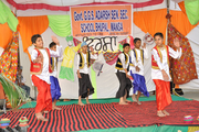 Government G G S Adarsh Secondary School-Cultural Program
