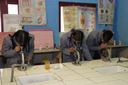 Rajindera Public Senior Secondary School-Biology Lab