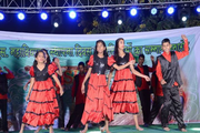 DCS International School-Annual Day Celebration