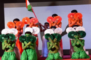 Swami Vivekanand Public School-Independence Day