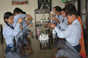 Green Mount Global School-Chemistry Lab
