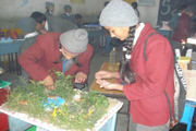 Sharda Public School-Activities