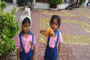 Gurukul Academy-Activity
