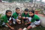 Maa Anandmayee Memorial School-Others plantation