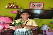 St Agnes Convent School-Activity