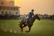 Vidsan Charterhouse horse riding
