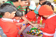 New R K Public School-Activity