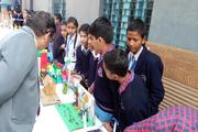 Spring Field Convent Junior High School-School Exhibition