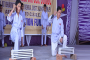 Dhauladhar Nirmla Devi Senior Secondary School-Activity